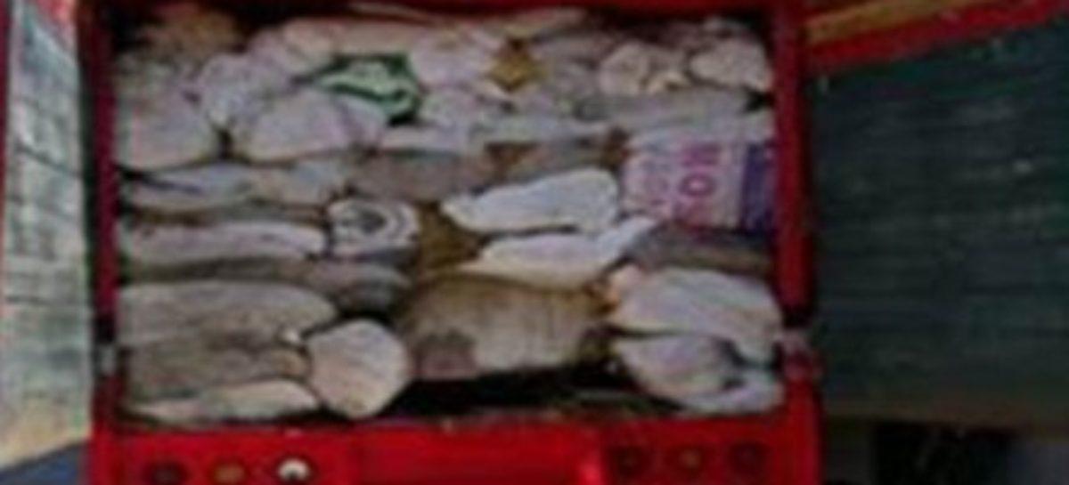 Detienen a 12 personas vinculadas con el robo de hidrocarburo en el Estado de México