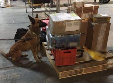 Aseguran siete lanzagranadas que eran enviadas en cajas de cartón, en Michoacán