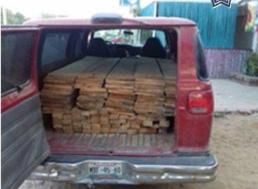 Detenido por transportar madera ilegalmente en San Pedro Mixtepec, Oaxaca
