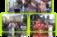 Prepara IMSS XIX Paseo Floral de Jubilados, Pensionados, Pensionistas y Adultos Mayores 2017