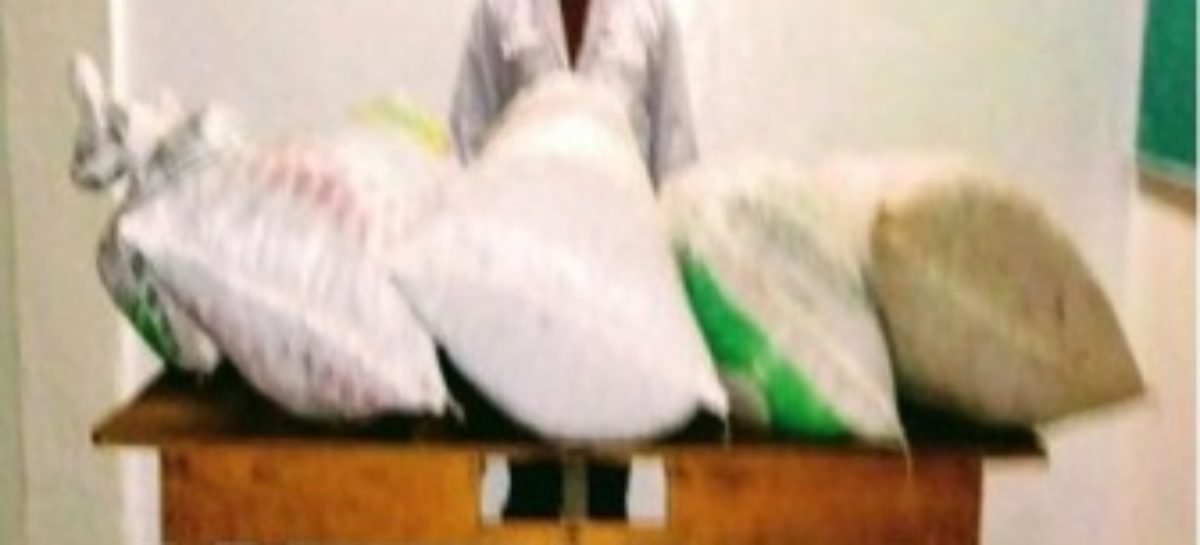 Aseguran a adulto y menor de edad con más de 30 kilogramos de marihuana en Sola de Vega
