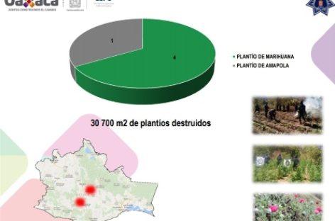 Presenta SSPO resultados sobre seguridad pública en marzo, en Oaxaca