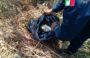 Localiza Policía Estatal cuatro kilogramos de marihuana en Zaachila, Oaxaca