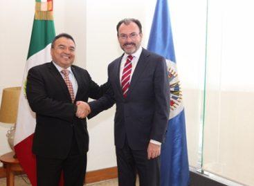 Revisan preparativos para periodo ordinario de sesiones de la OEA en México