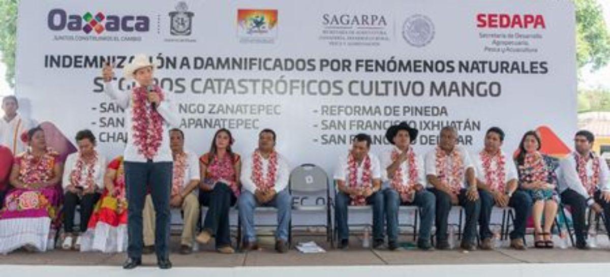 Entregan más de 5.5 mdp a productores de mango en el Istmo