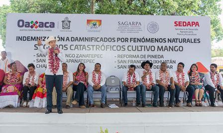 A productores de mango en el Istmo