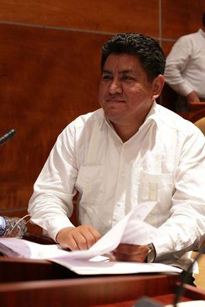 Coordinador de la Fracción Parlamentaria de Morena
