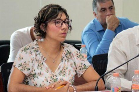 Rinde órgano electoral de Oaxaca informe de avances en materia de comunicación