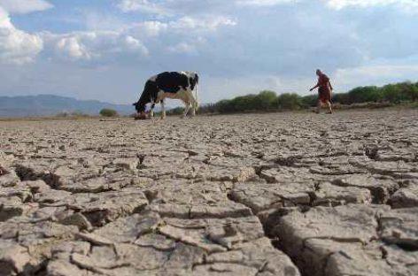 Alerta CNDH sobre degradación del suelo mexicano; pone en riesgo ejercicio de los derechos humanos