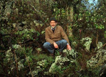 Carrera del Día del Padre, escenario internacional para promover al bosque de Tlalpan ante UNESCO