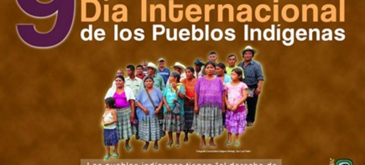 Asimetría entre leyes y realidad impide a pueblos originarios ejercicio pleno de sus derechos