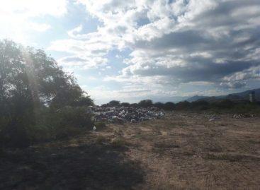 Nuevo atentado contra el medio ambiente en Valles Centrales