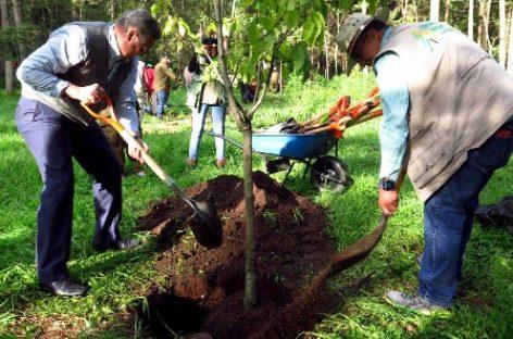 Inscribirá CORENA al bosque de Tlalpan para buscar denominación de reserva de la biósfera urbana