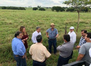 Una realidad, Parque Agroindustrial Papaloapan: Secretaría de Economía