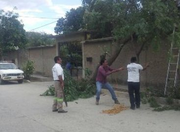 Implementa CEPCO operativo por lluvias y vientos fuertes en Oaxaca
