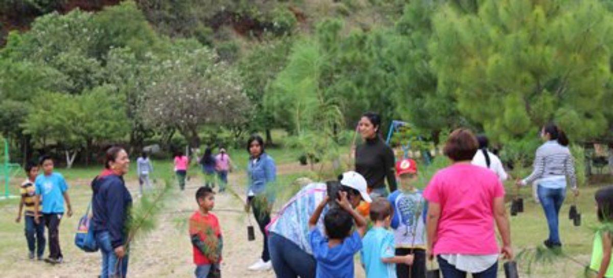 """Impulsan el cuidado forestal en el Parque """"Benito Juárez"""""""