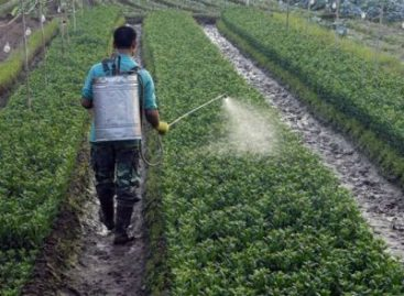 Solicitan senadores informes sobre la comercialización y uso de plaguicidas en el país