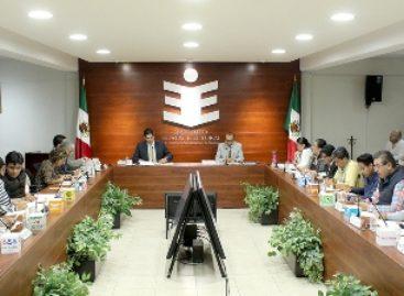 Conforma Consejo General comisiones del Instituto Electoral de Oaxaca