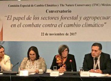 Presentan estudio de 15 instituciones vinculadas al medio ambiente