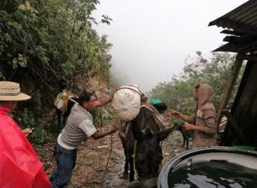 Sortea Diconsa complicaciones para surtir la zona serrana de Veracruz