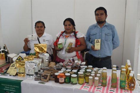 Celebró SAGARPA I Feria Agroalimentaria en Oaxaca, antesala a la México Alimentaria 2017