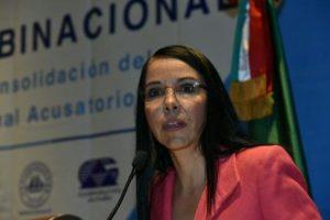 María de los Ángeles Fromow Rangel, ex titular de la Secretaría Técnica para la Implementación del nuevos Sistema Penal Acusatorio.