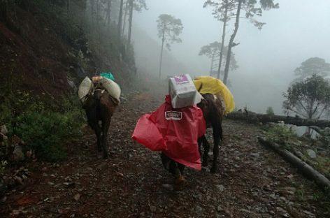 Pese a nevadas, asegura Diconsa abasto de granos y alimentos en norte y centro del país