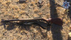 Portación de arma de fuego