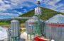 Con cuatro almacenes graneleros, DICONSA acopia cerca de 100 mil toneladas de maíz