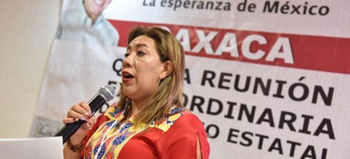 Con unidad democrática, responderá Morena actos de provocación: Nancy Ortiz