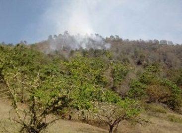 Controlado en un 55 por ciento incendio Forestal en la Sierra Norte de Oaxaca