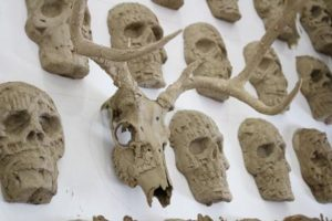 """365 cráneos humanos de resina y barro y dos cráneos originales de venado muestran """"El muro""""."""