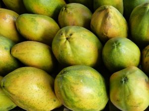 La fruticultura, actividad que se desarrolla en más de 59 mil hectáreas del campo oaxaqueño.