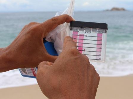 Se obtuvieron muestras en agua de mar