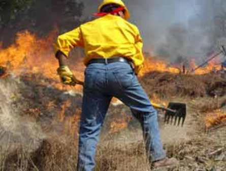 Conmemoran Día Internacional del Combatiente de Incendios Forestales