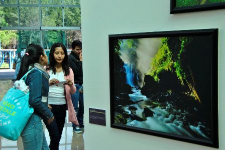 """Taiwán ofrece exposición de fotografía """"Una narrativa de luz. El año del mono"""" en el FINI 2016"""