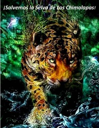 Salvemos la selva de los Chimalapas