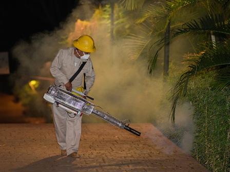 Baja incidencia de dengue