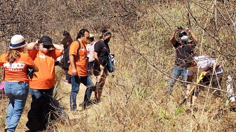 Ciudadanos continúan reforestando el parque ecológico del Cerro de El Fortín -Video-