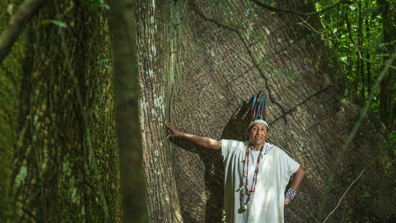 LOS PUEBLOS INDÍGENAS LATINOAMERICANOS SUFREN CADA VEZ MÁS PRESIONES PESE A TENER UN PAPEL CRUCIAL CONTRA EL CAMBIO CLIMÁTICO