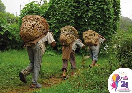 77% de la población trabajadora en México