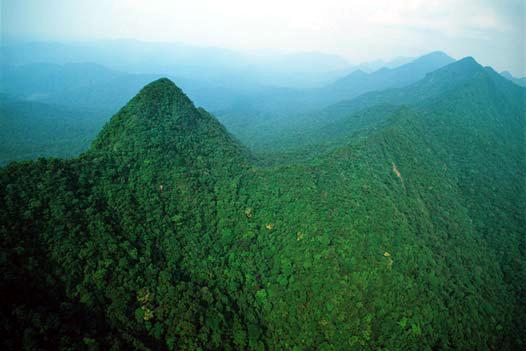 Urge apoyo para preservar recursos naturales de Los Chimalapas