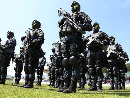División de Gendarmería de la Policía Federal