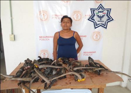 Detenida por presunto delito contra la biodiversidad y la fauna