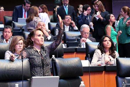 Elige Pleno del Senado de la República
