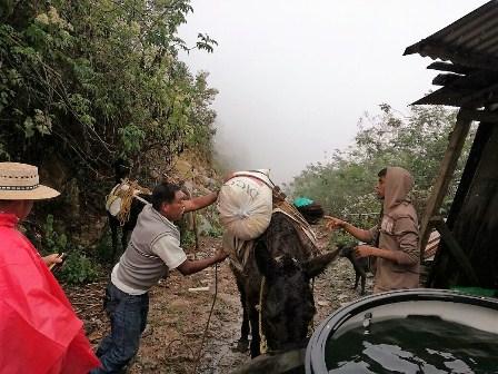 Zona serrana de Veracruz
