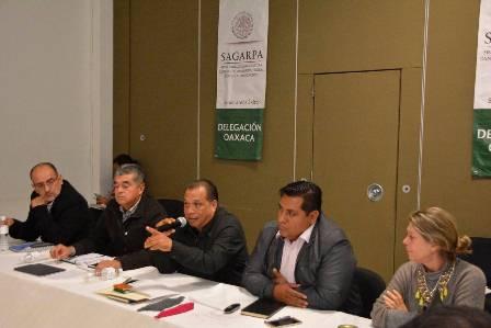 Delegado de la SAGARPA Oaxaca