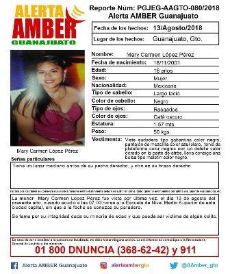 Desapareció en Guanajuato