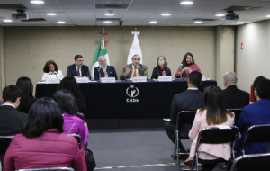 """Conversatorio """"El interés superior de las niñas y las adolescentes en contexto de migración con motivo de la Recomendación 12/2018""""."""