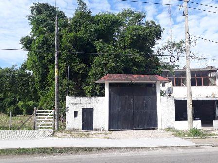Finca en Palenque